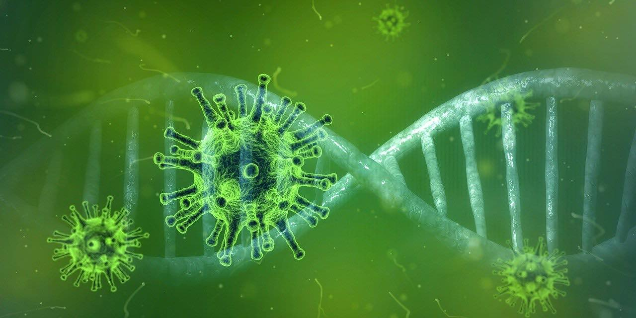 Breaking News Coronavirus Ibiza